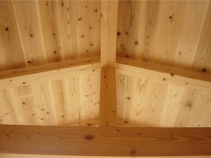 木材のカビ